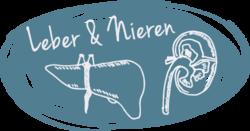 Illu Leber und Nieren