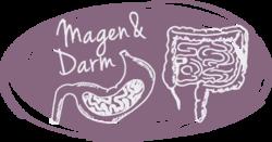 Illu Magen Darm