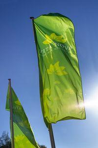 Vita Nova Flagge