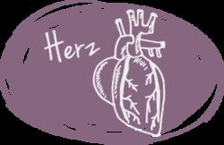Illu Herz