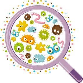 Bakterien